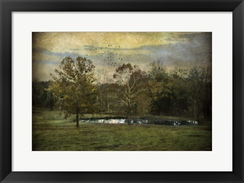 Framed Quiet At The Pond Print