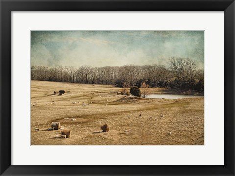 Framed Sheep In The Meadow Print