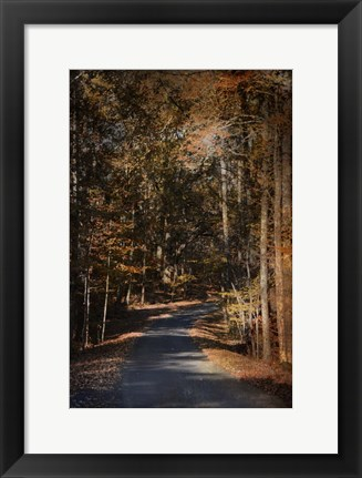 Framed Sunlit Autumn Path Print