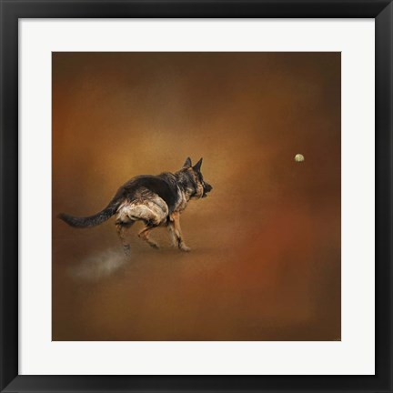 Framed Gimme That Ball German Shepherd Print
