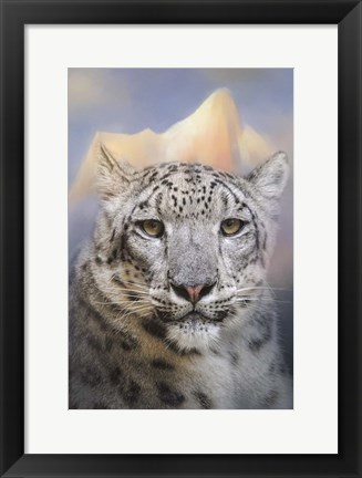 Framed Snow Leopard At The Mountain Print