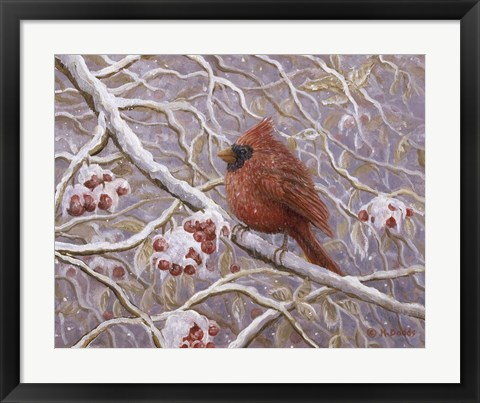 Framed Cardinal and Wild Berries Print