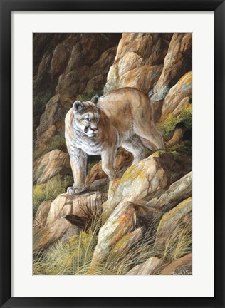 Framed Perfect Camouflage Print