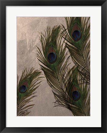Framed Peacock Feathers I Print