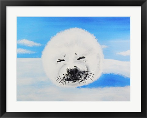 Framed Harp Seal Print