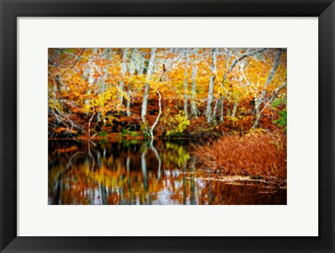 Framed Fall Pond Colors 1 Print