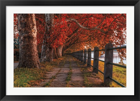 Framed Walk by the River Print