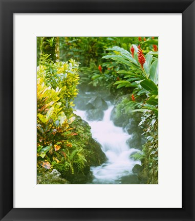 Framed Waterfall, Tabacon, Costa Rica Print