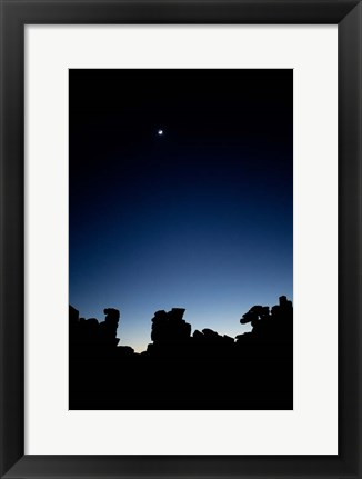 Framed Quiver Tree Forest at Night, Namibia Print