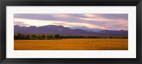 Framed Bosque Del Apache National Wildlife Refuge, New Mexico Print