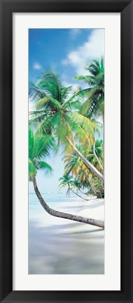 Framed Pigeon Point, Tobago Print