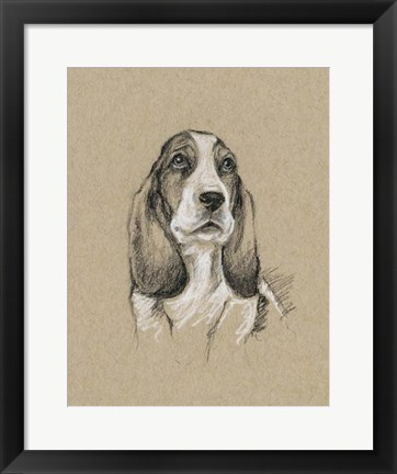 Framed Breed Sketches VI Print