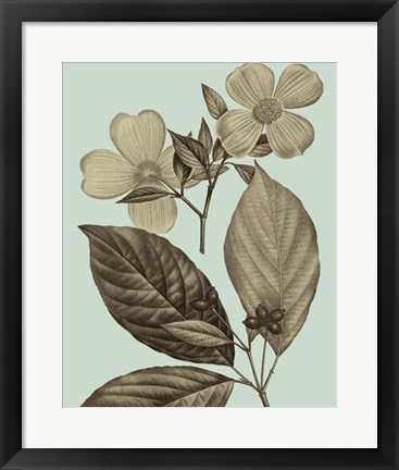 Framed Flowering Trees III Print