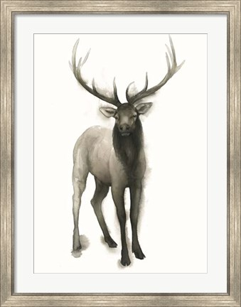 Framed Majestic Wildlife II Print