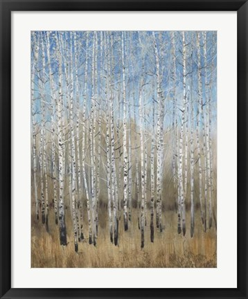 Framed Dusty Blue Birches II Print