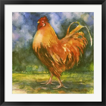 Framed Rooster Field Print