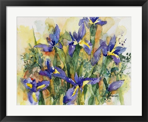 Framed Indelible Irises Print