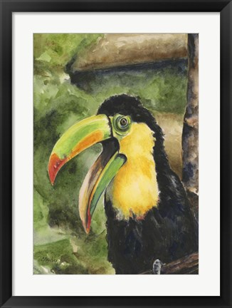 Framed Toucan Bill Print