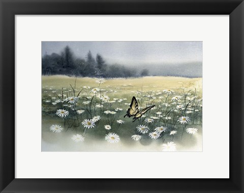 Framed Daisy Field Print