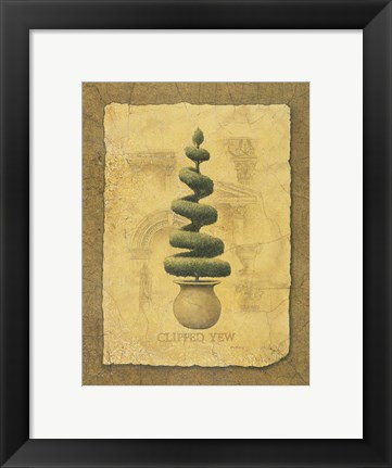 Framed Clipped Yew Print