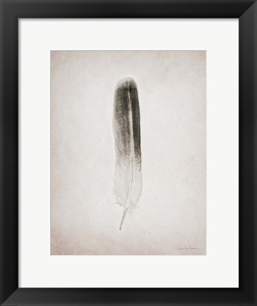Framed Feather II BW Print