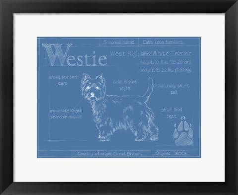Framed Blueprint Westie Print