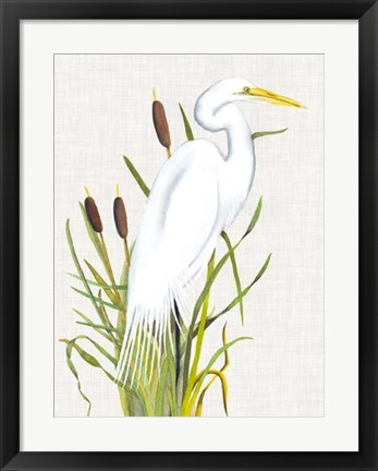 Framed Waterbirds & Cattails III Print