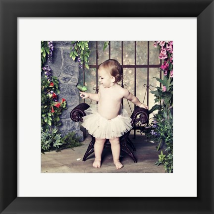Framed Visiting Butterfly Print