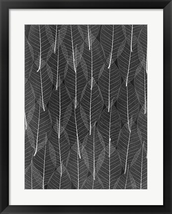 Framed Leaves 4 Print
