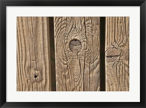 Framed Knots in Wooden Beams Print