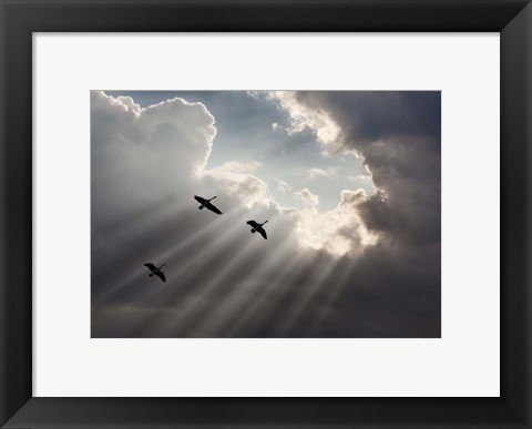 Framed Flying on Sunbeams, Macinaw Island, Michigan 10 Print