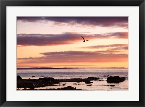 Framed Flying At Sunrise, Sault St. Marie, Michigan 12 Print