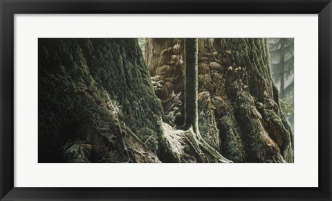 Framed Blacktail In Sitka Print