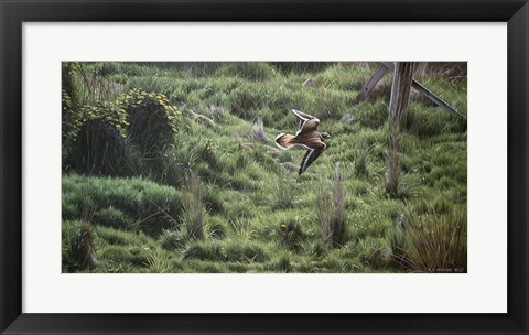Framed Spring Flight Print