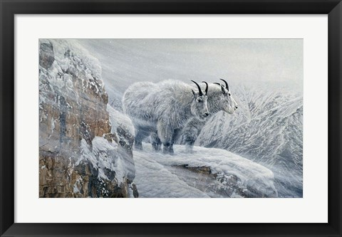 Framed Winter's Fury Mountain Goat Print