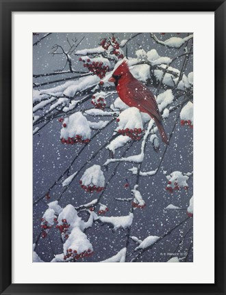 Framed Mountain Ash Print