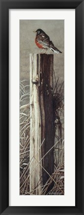 Framed Fence Post Print