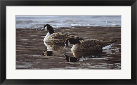 Framed Break In The Ice- Canada Geese Print