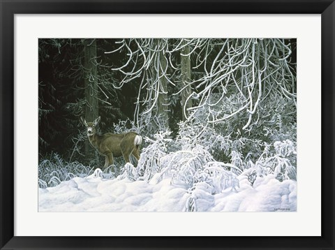 Framed Snow Palace - Mule Deer Print