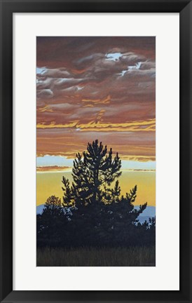 Framed Evening Pine Print