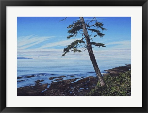 Framed Pacific Shore Print