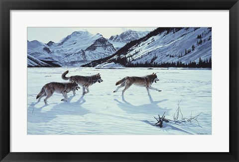 Framed On The Run - Wolf Pack Print