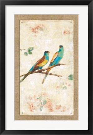Framed Hooded Parrot Print