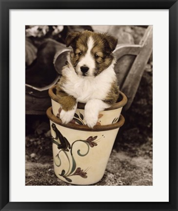 Framed Potted Pup Print