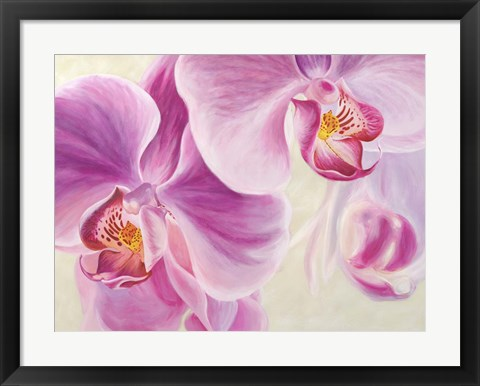 Framed Purple Orchids Print