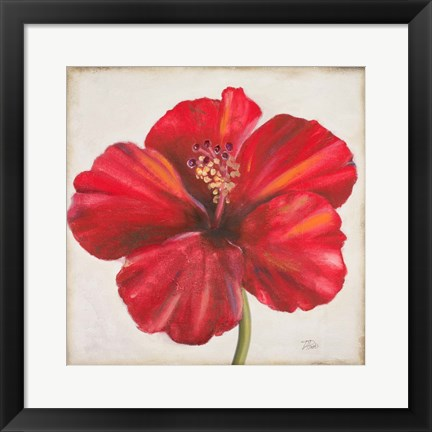 Framed Red Hibiscus Print