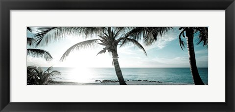 Framed Cool Bimini I Print