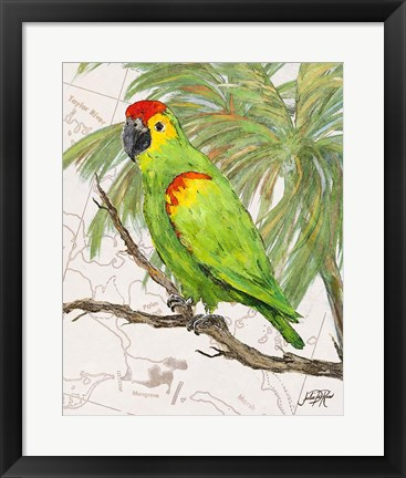 Framed Another Bird in Paradise II Print