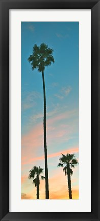 Framed Sunset Palms Print