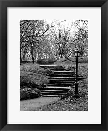 Framed Central Park Stairs To Nowhere Print